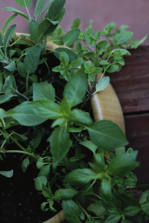 repurposed salad bowl | most popular in april | the free spirited