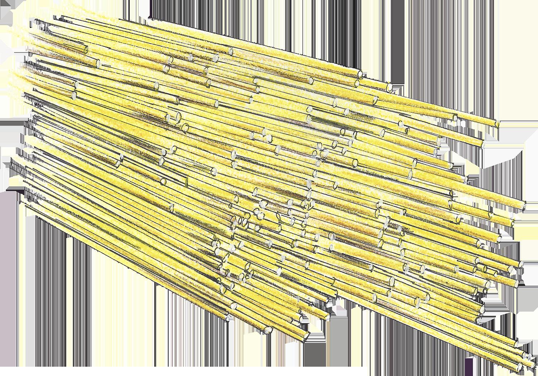 Spaghetti-Web-sm.png