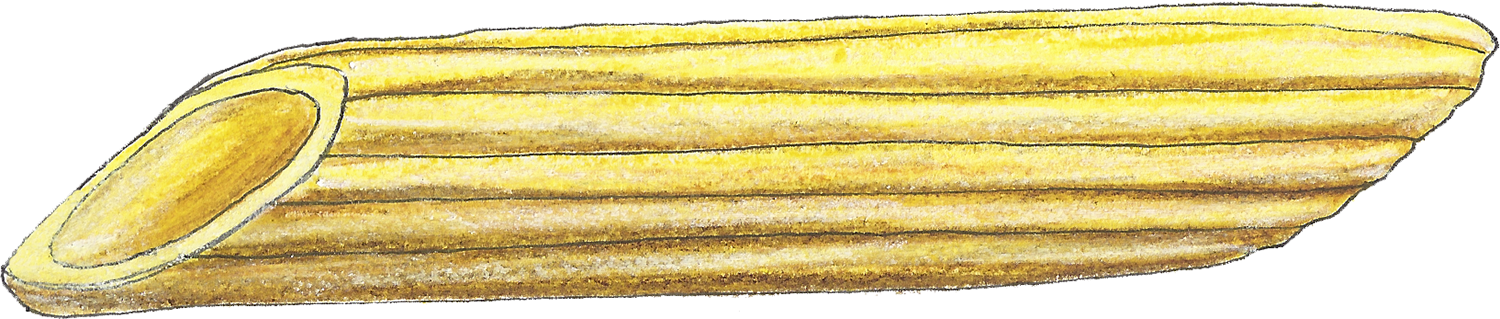 Penne-web.png