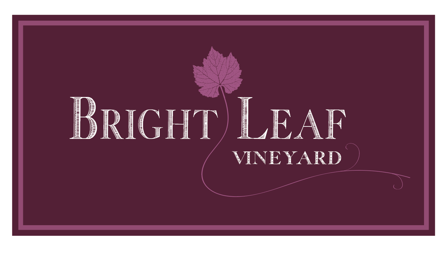 10 Boxed Logo on Burgundy