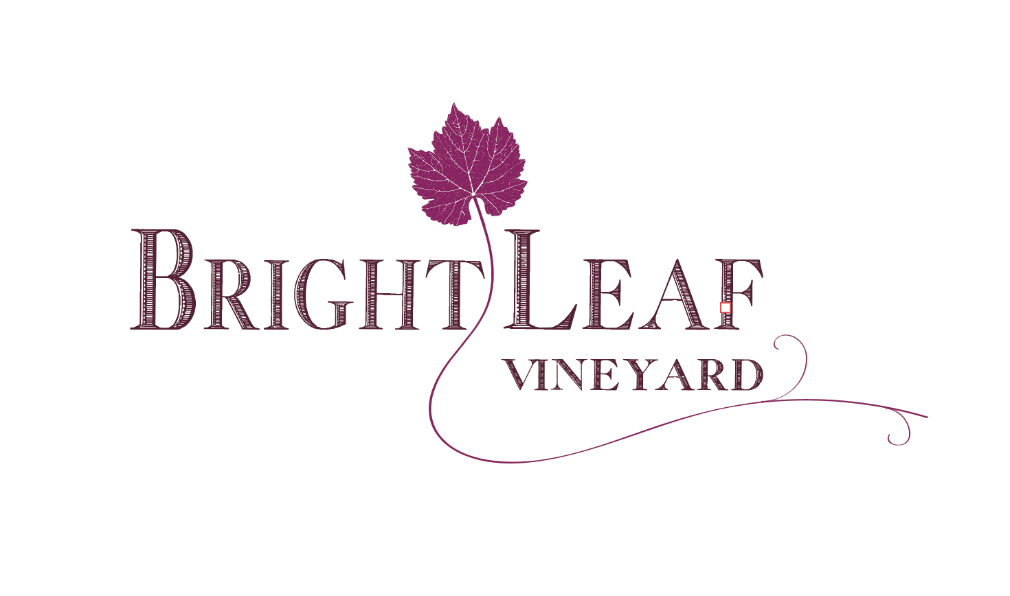 7 Logo Variation w/vine Magenta
