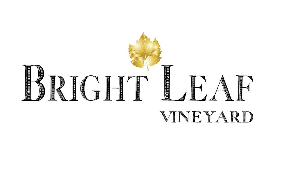 2 Basic Logo Gold Leaf