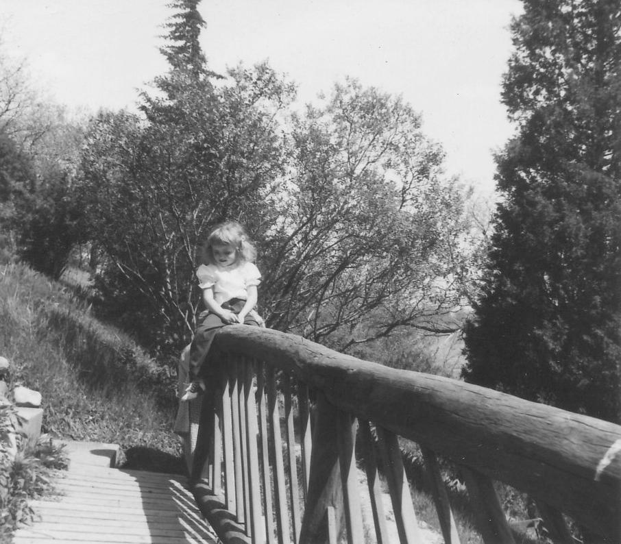 Photo of primitive timber railings