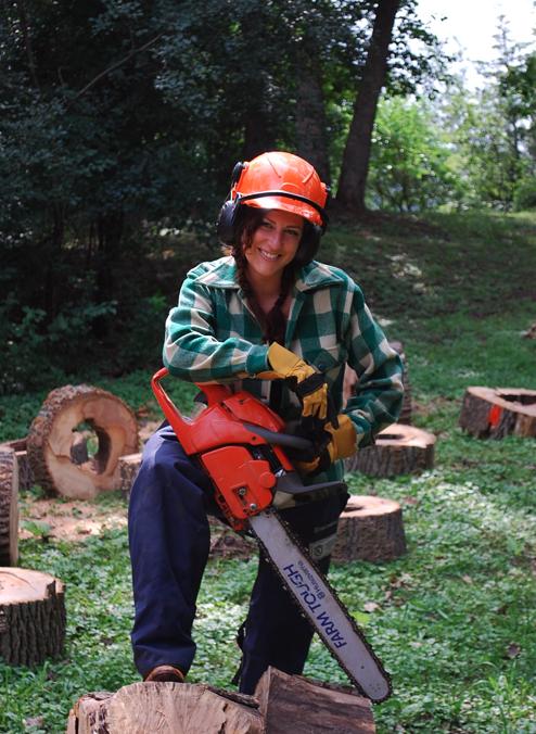 Processing Fallen Trees