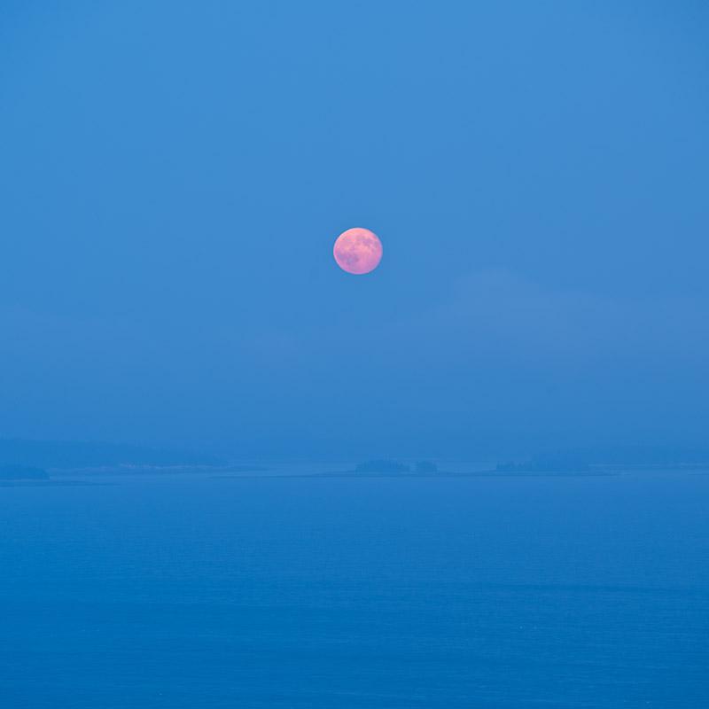 Harvest-Moon-Jim-Nickelson.jpg