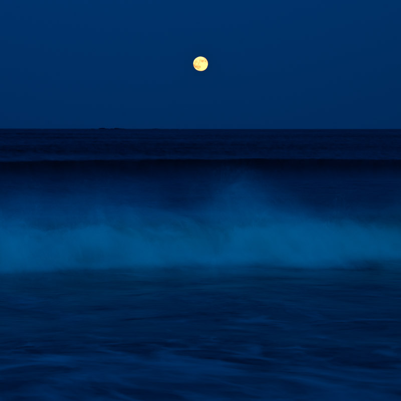 """Thunder Moon II"""