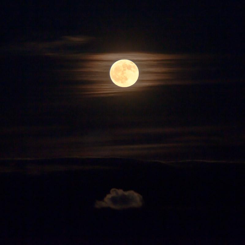 """""""Long Nights Moon"""""""