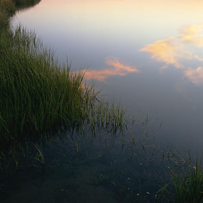 Nauset_Marsh_Sunrise_Fort_Hill_Cape_Cod_Nickelson.jpg