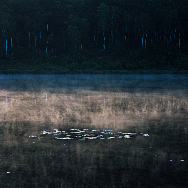 """The Tarn"", Copyright Jim Nickelson. Acadia National Park."