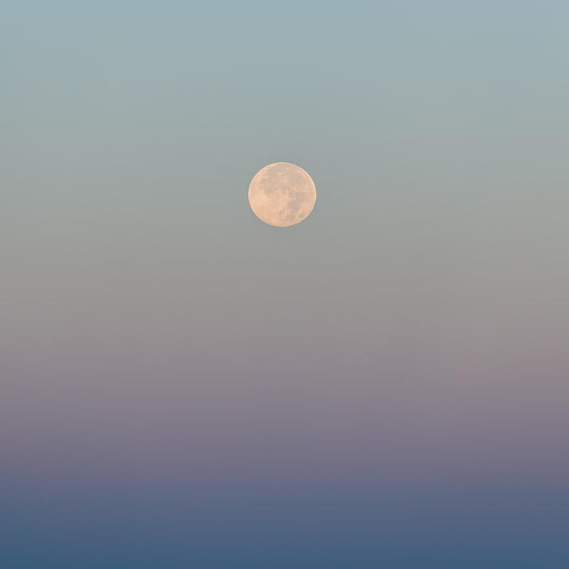 Autumn Moon II