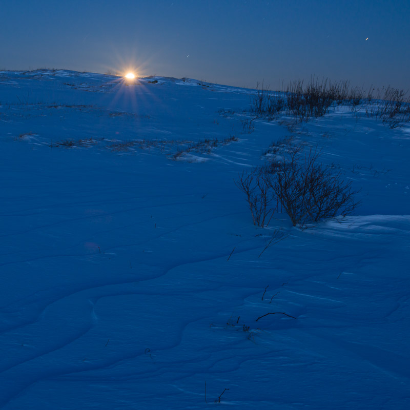 Cold Moon II