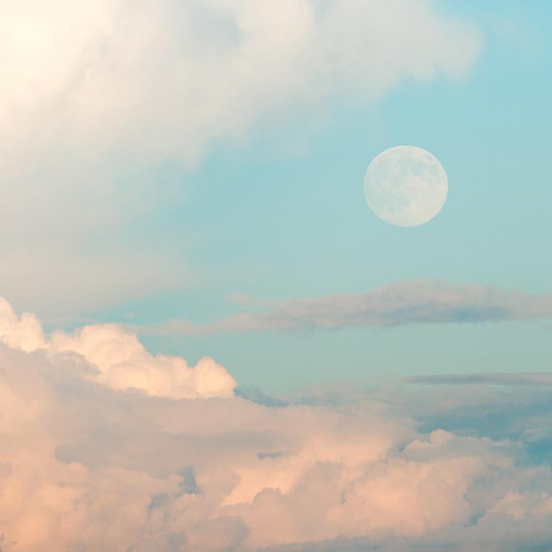 Dog Days Moon IV