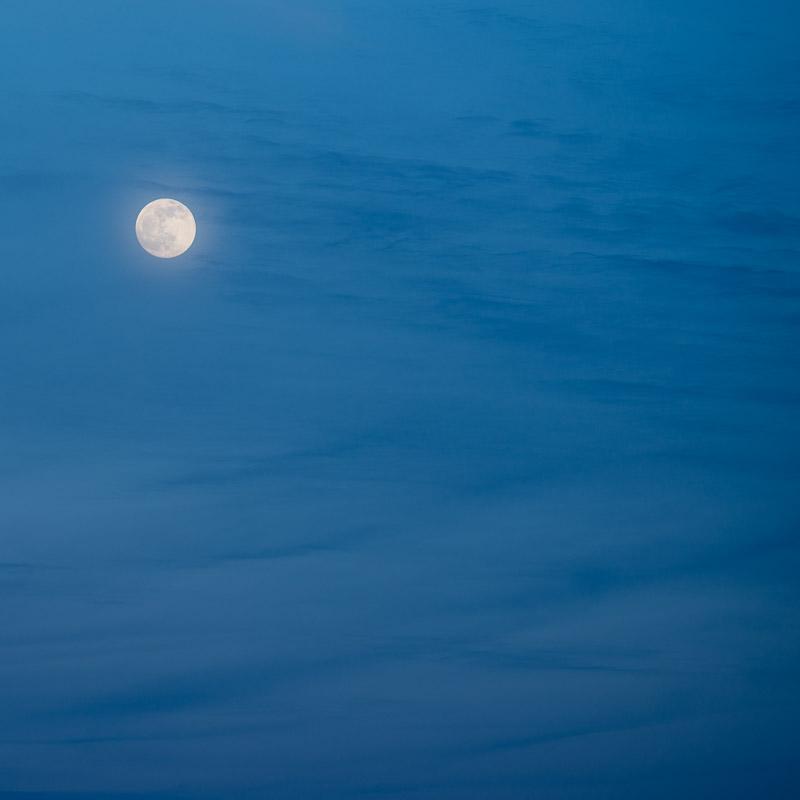 Dragon Moon IV