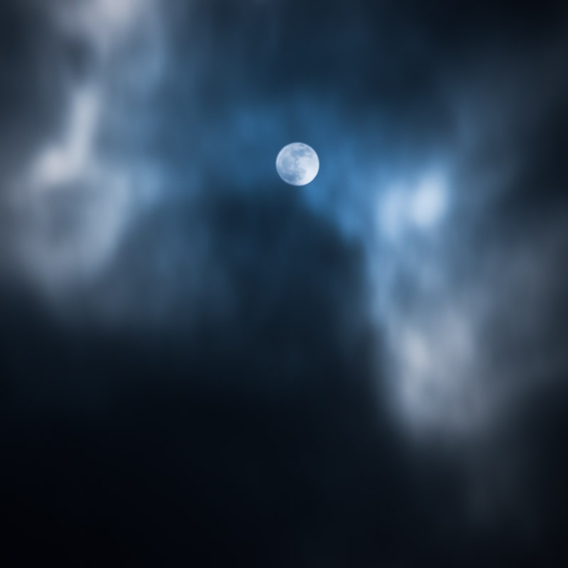 Wolf Moon I