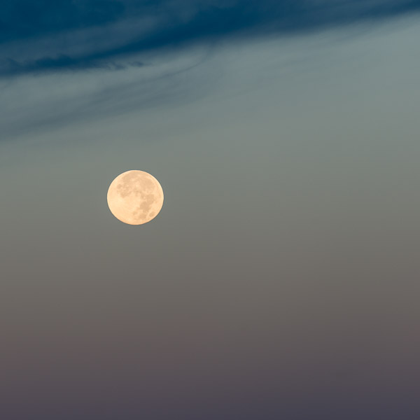 """""""Autumn Moon IV"""", Copyright Jim Nickelson. All Rights Reserved."""