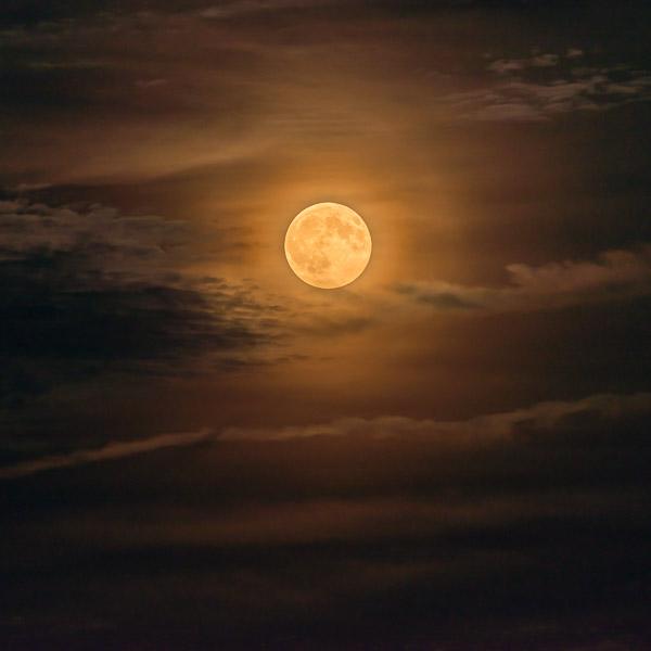 Moon of the Ripening I
