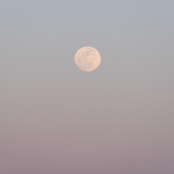 Moon of Wakening I