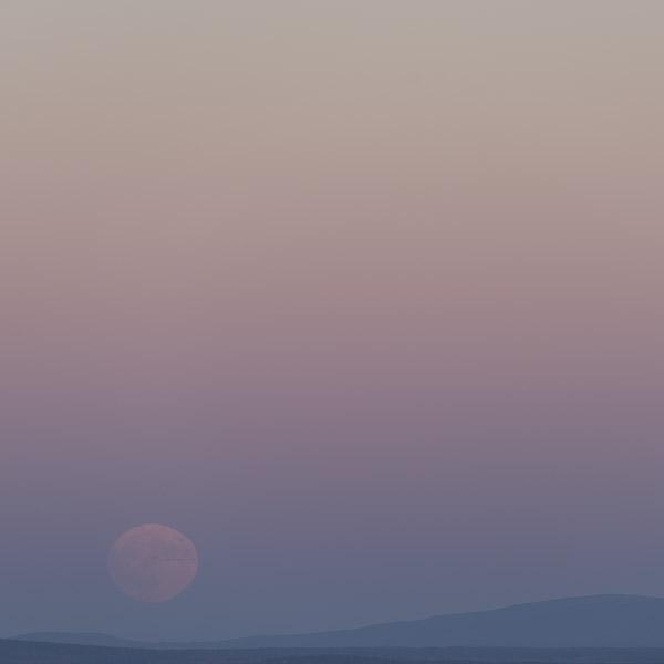 Mourning Moon II