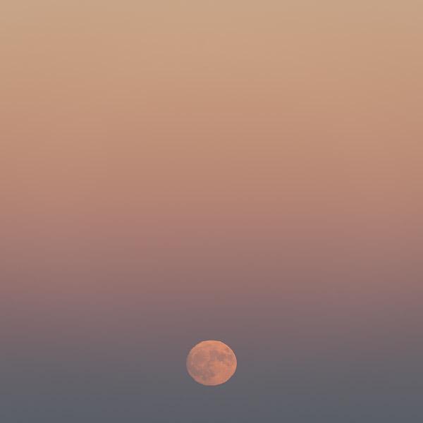 Mourning Moon III
