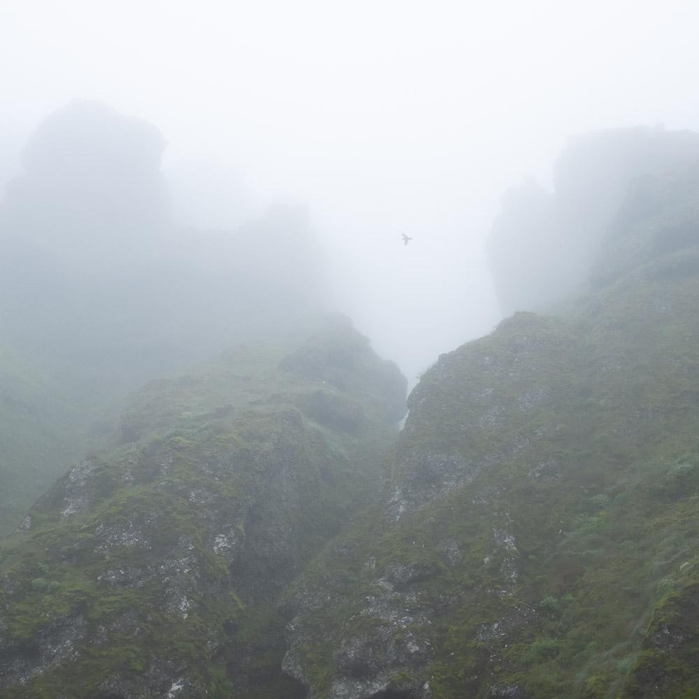 Rauðfeldsgjá #5