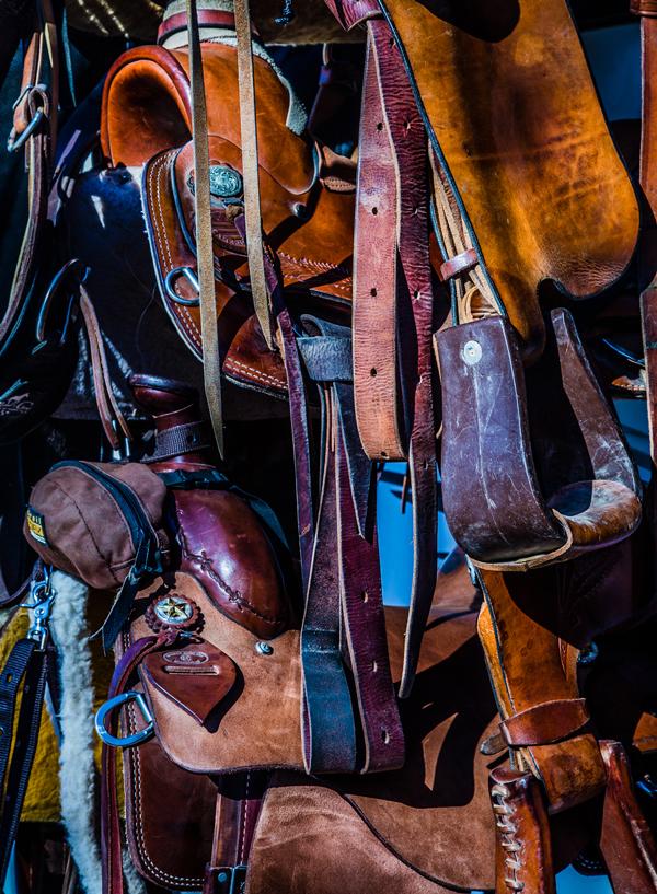 McGee-Saddles-lo-res.jpg
