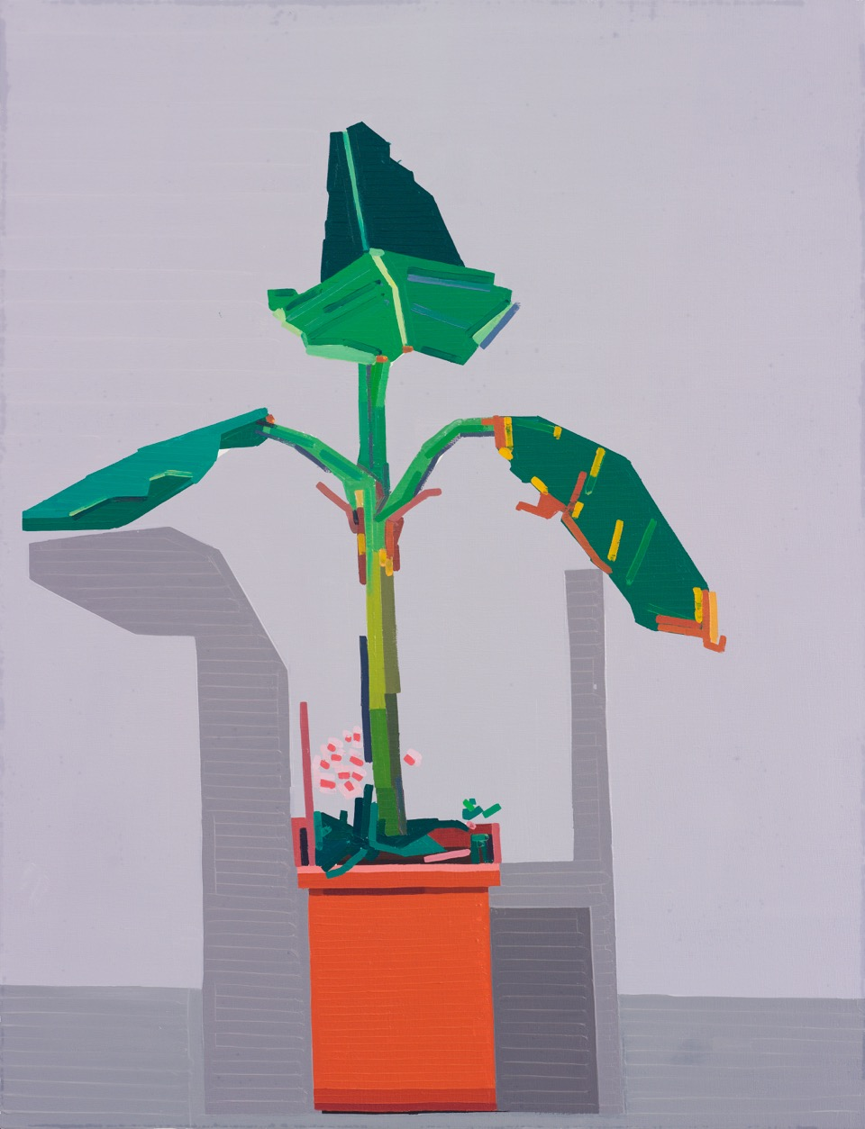 Guy Yanai. End of Europe (Plant in Corner), 2015