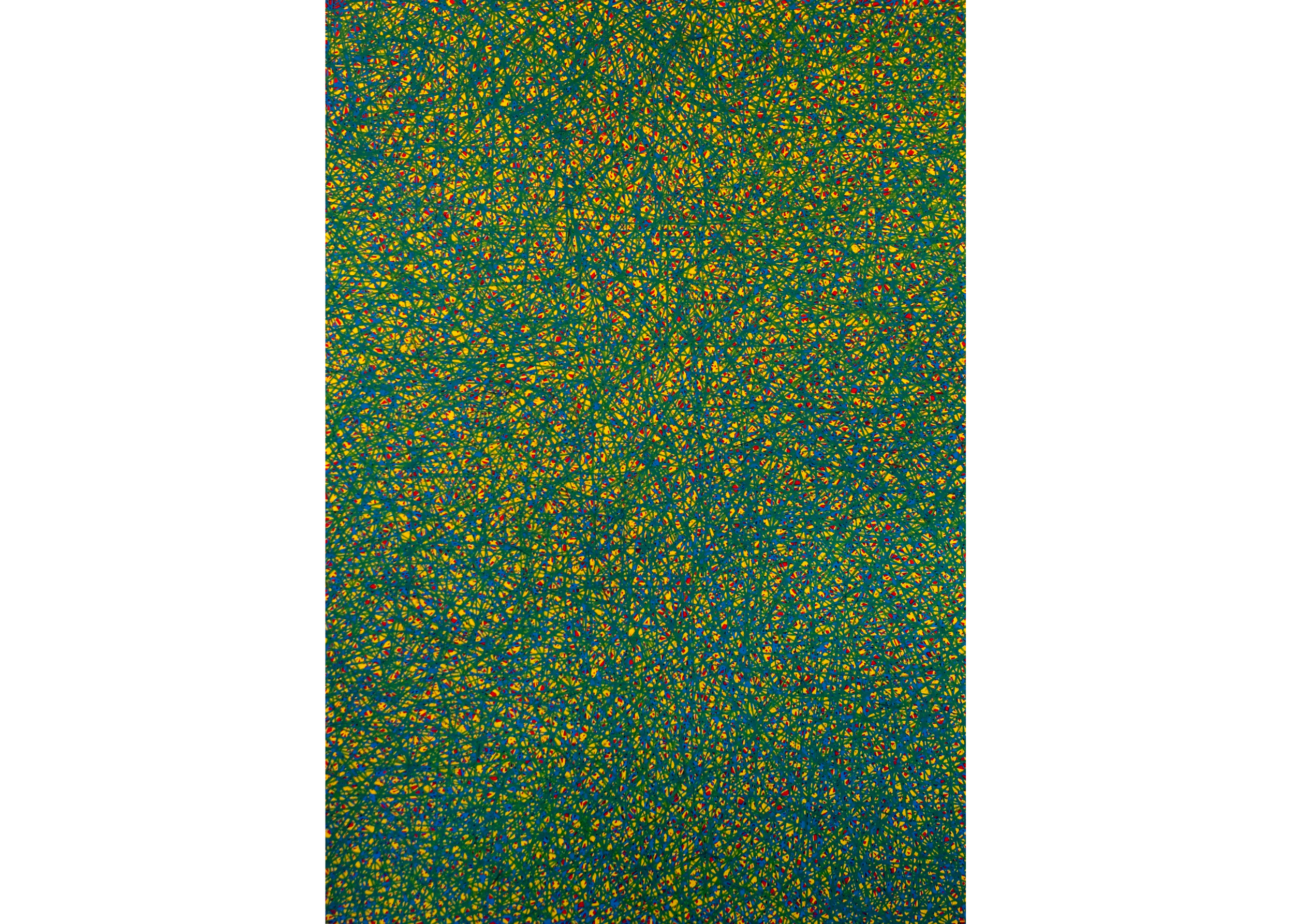 Untitled, 2010, color pencil on paper, 58 x 40 in.