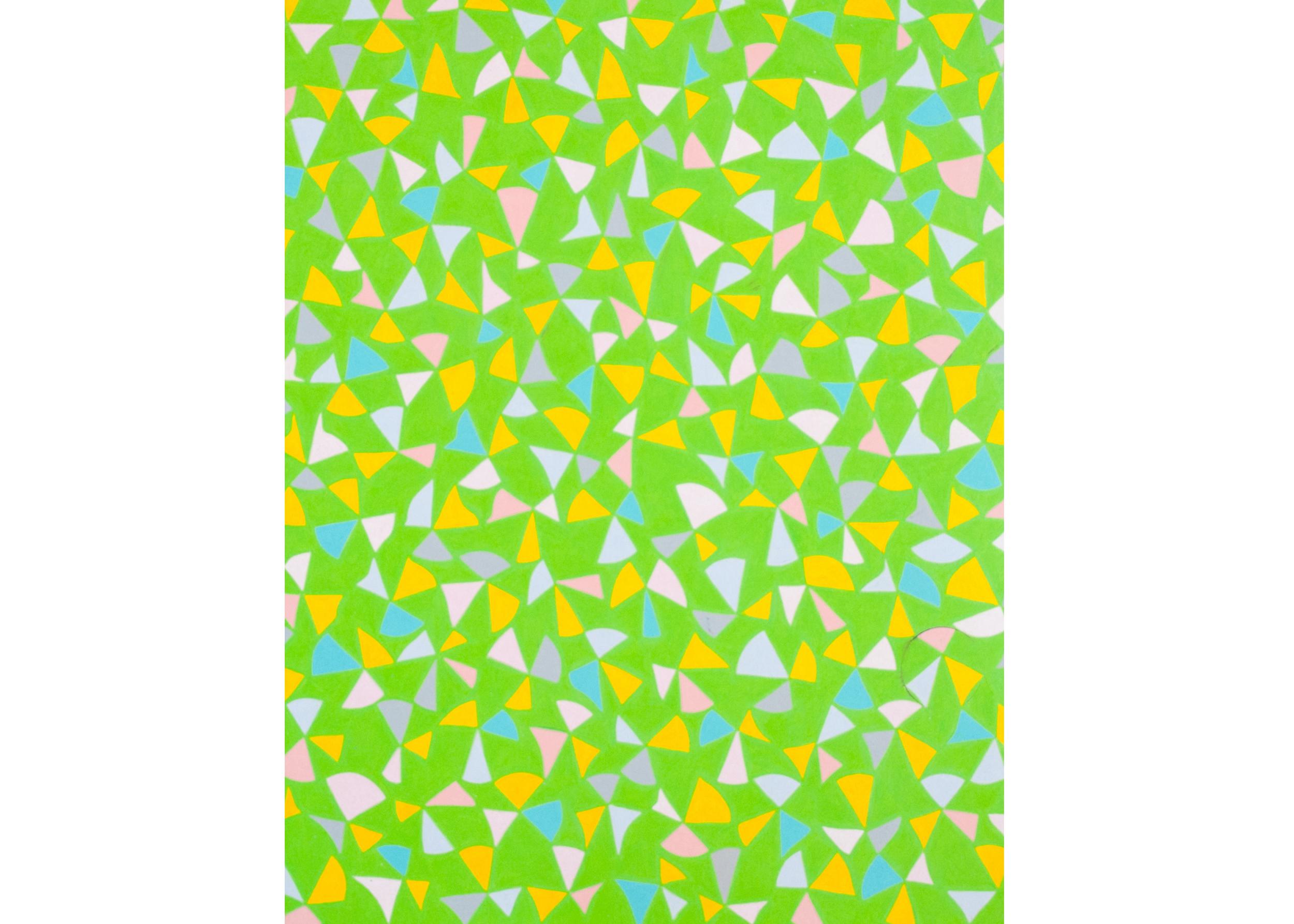 Untitled (Seirpinski Matrix), 2011, color pencil on paper, 22 x 16 in.