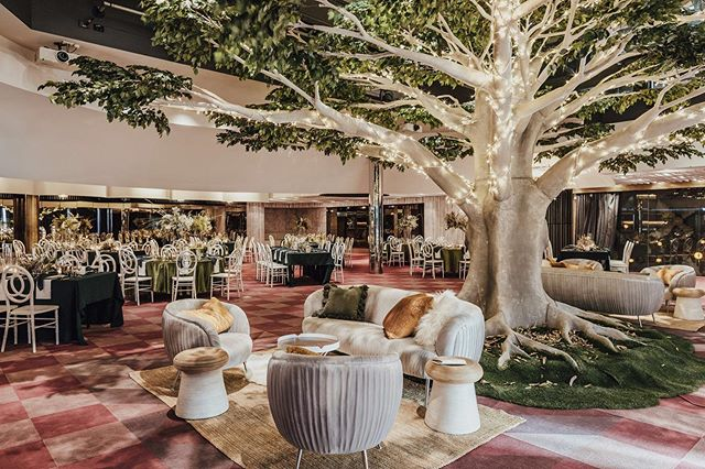 :: TREES + LIGHTS :: Alongside a touch of green + white and hey presto, re-imagining Cloudland Weddings for 2019 and beyond.  Hats off to the Team that made it all possible. 👏 👏👏 . Photo: @lover_ofmine  Tree: @autumngroveevents  Venue: @cloudlandbrisbane  Chairs: @avideas_  Floral, Styling, Design: @maineventweddings_ w @florasauraflowers and @garden.graffiti . . . #rainbowroom #cloudlandweddings #cloudlandbrisbane #cloudland #brisbaneweddingvenue #brisbaneweddingdesigner #brisbaneweddingflorist #brisbaneweddingstylist #brisbaneweddings #maineventweddings