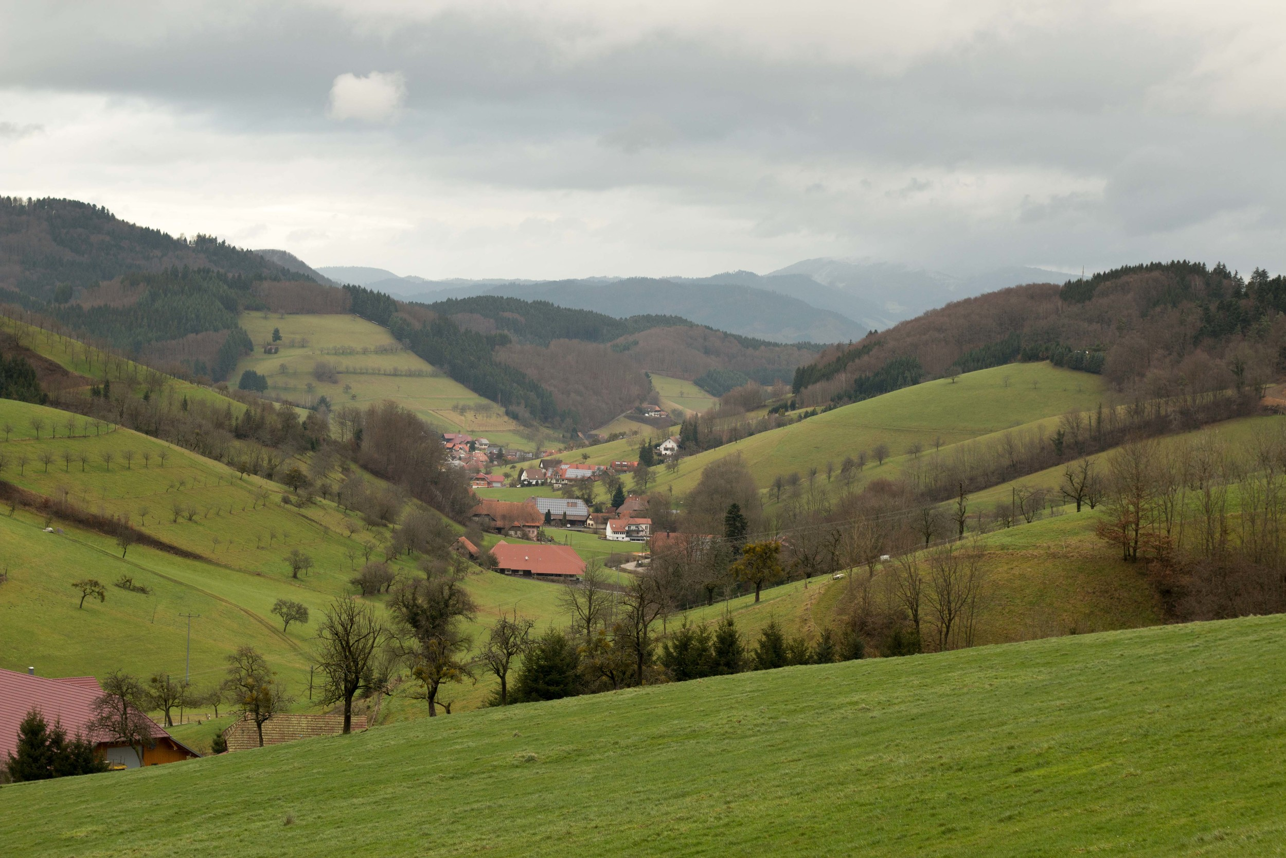 Perfect little village in a perfect little valley in the Schwarzwald.