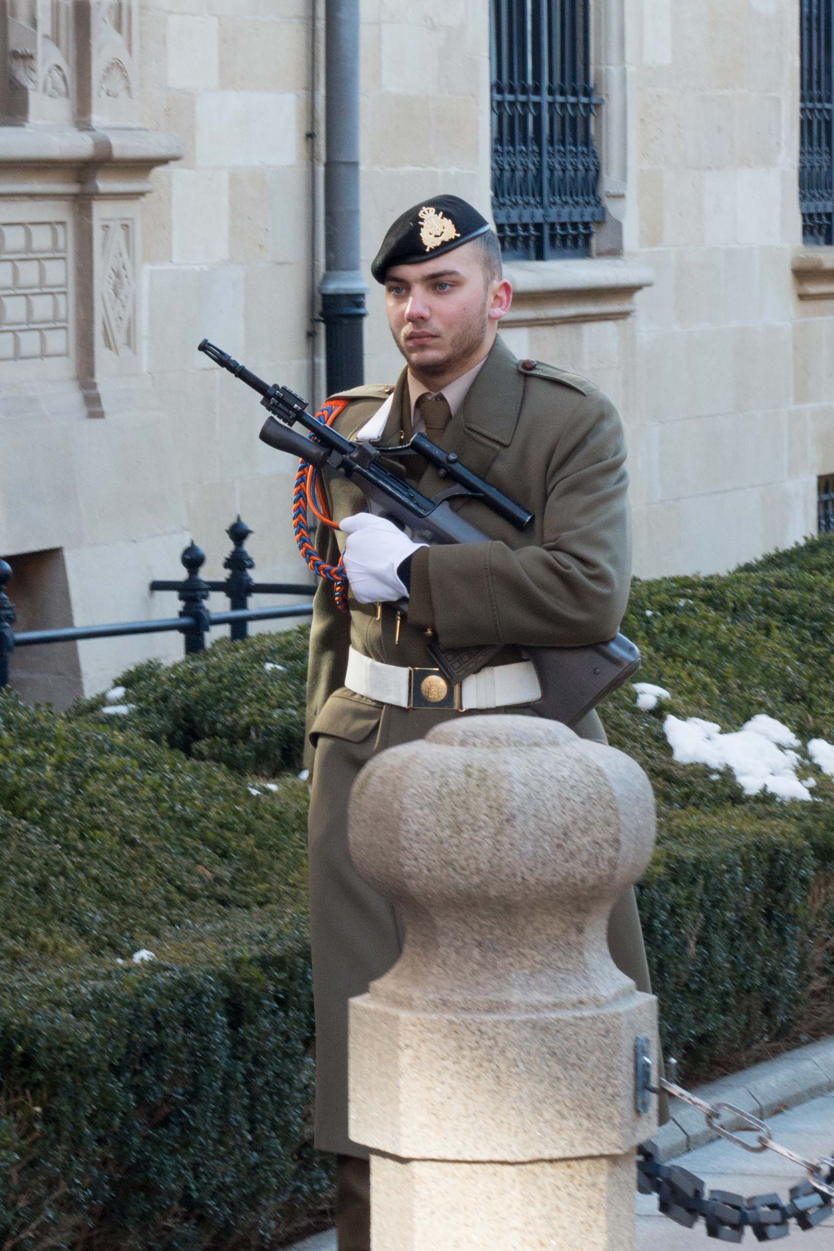 The lonely guard in front of the royal residence in the city.