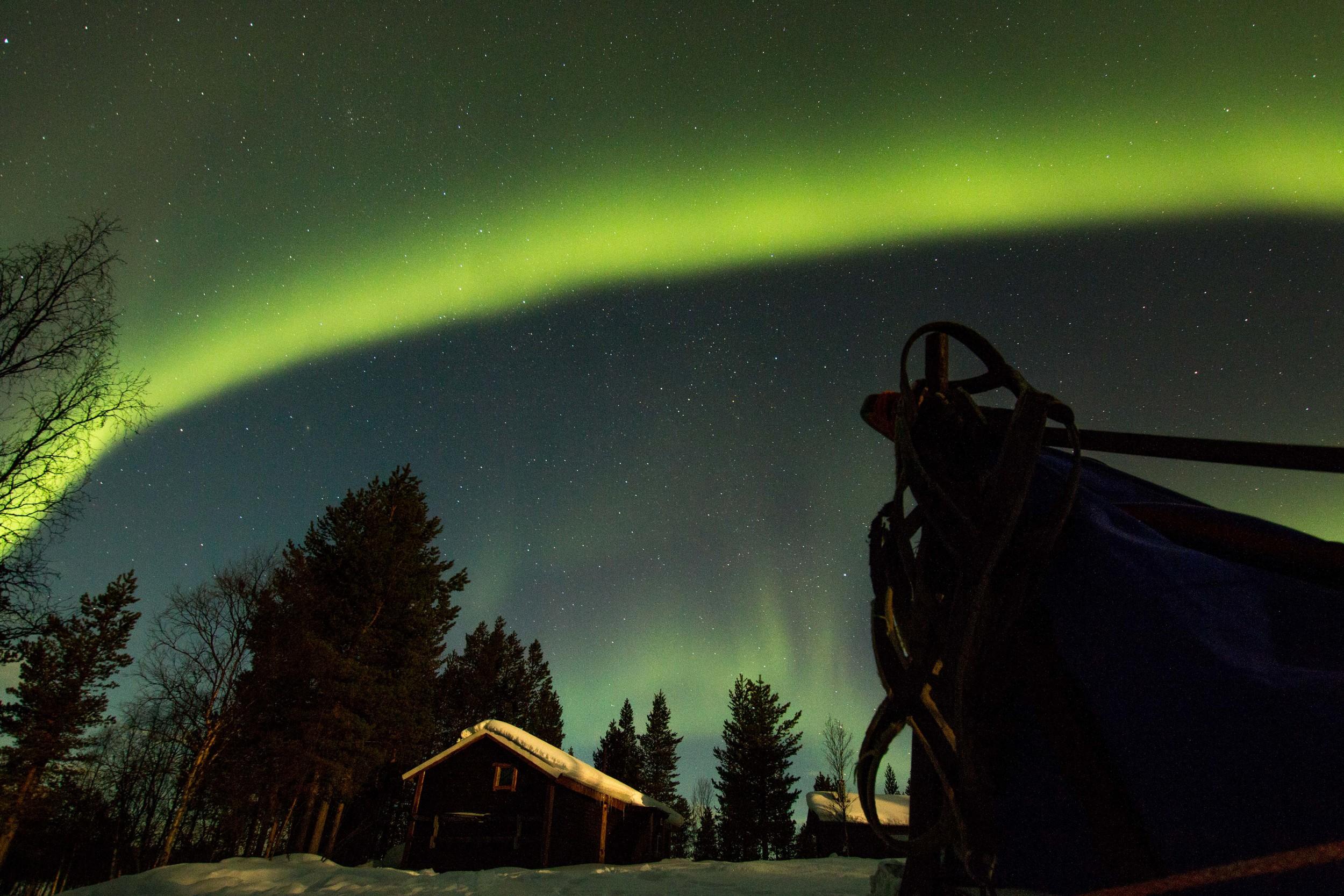 Northern Lights, White Trail Adventures - Kiruna, Sweden - March 2015
