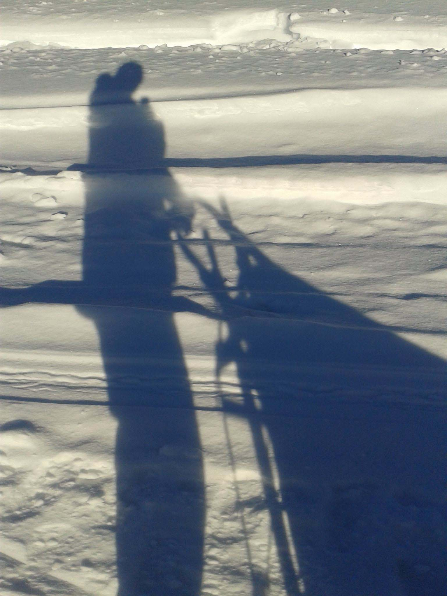 The shadows are long this far north