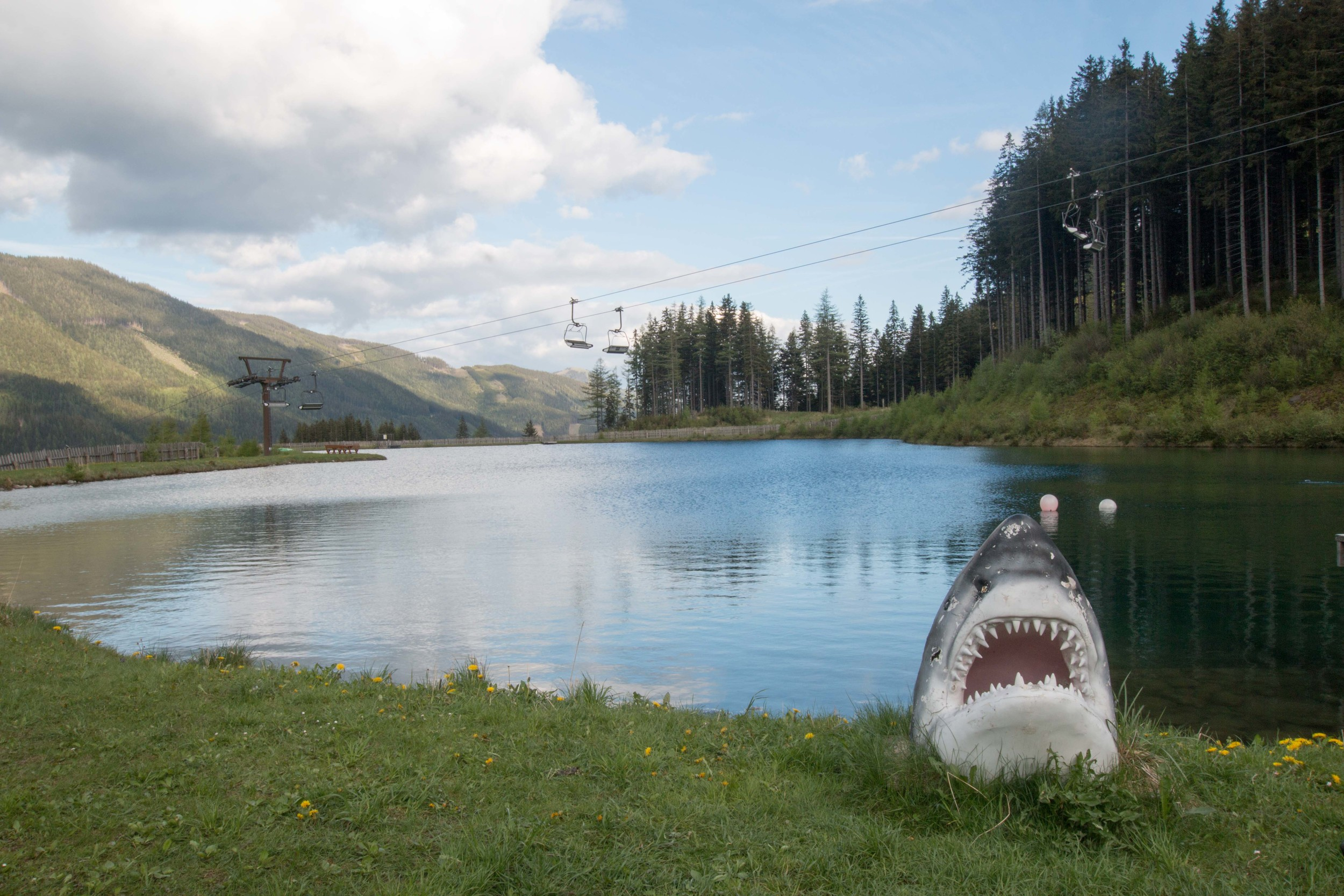 Contrary to what is shown here, the lake is, indeed, shark free.