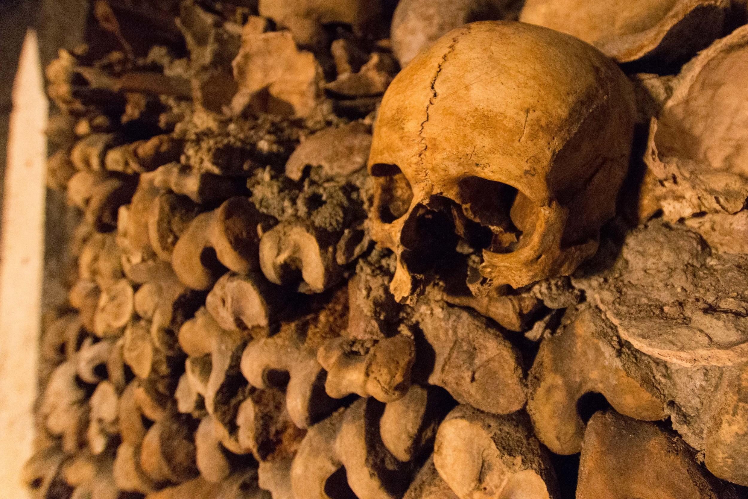 skull stacked within long bones