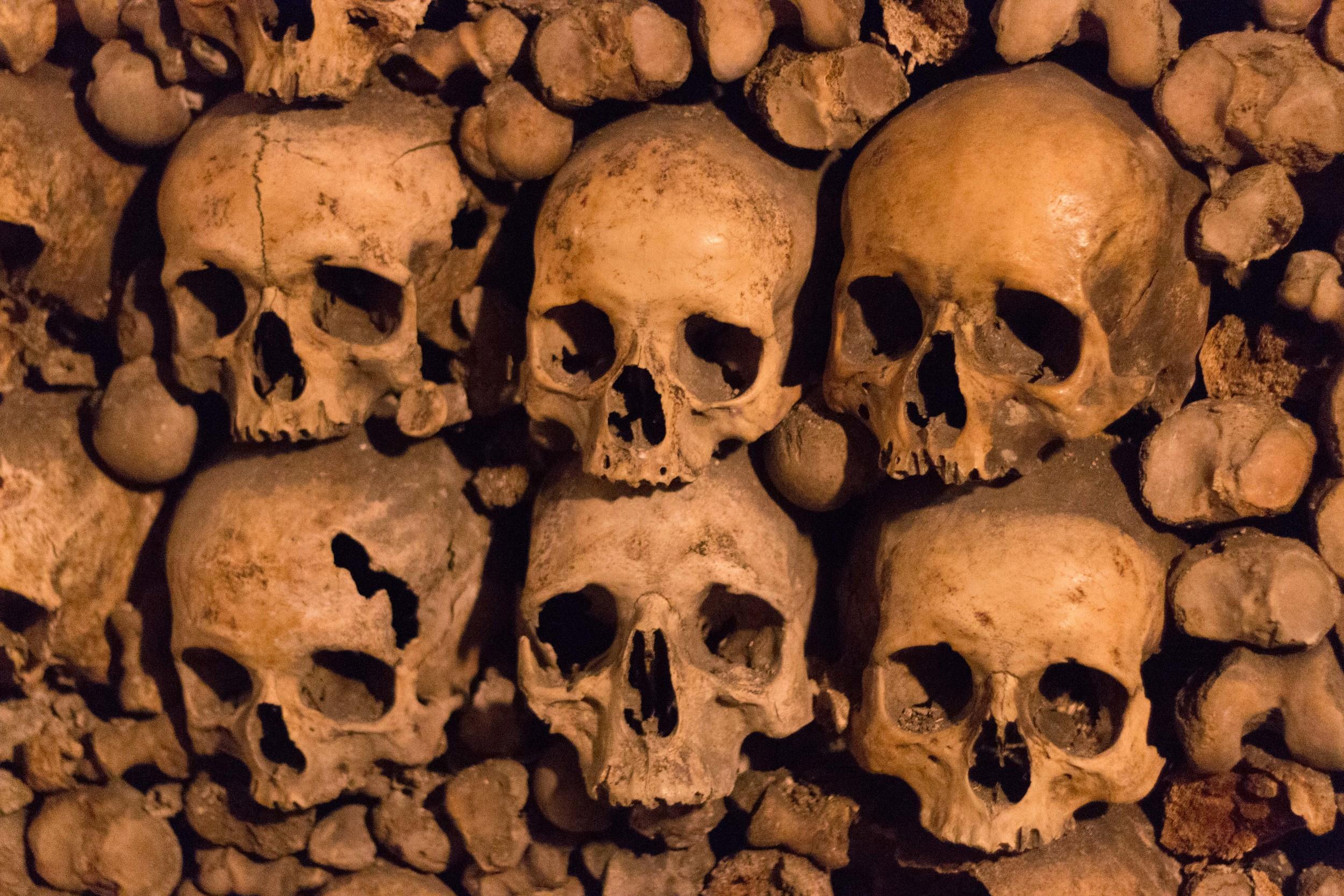 Skulls stacked within femurs