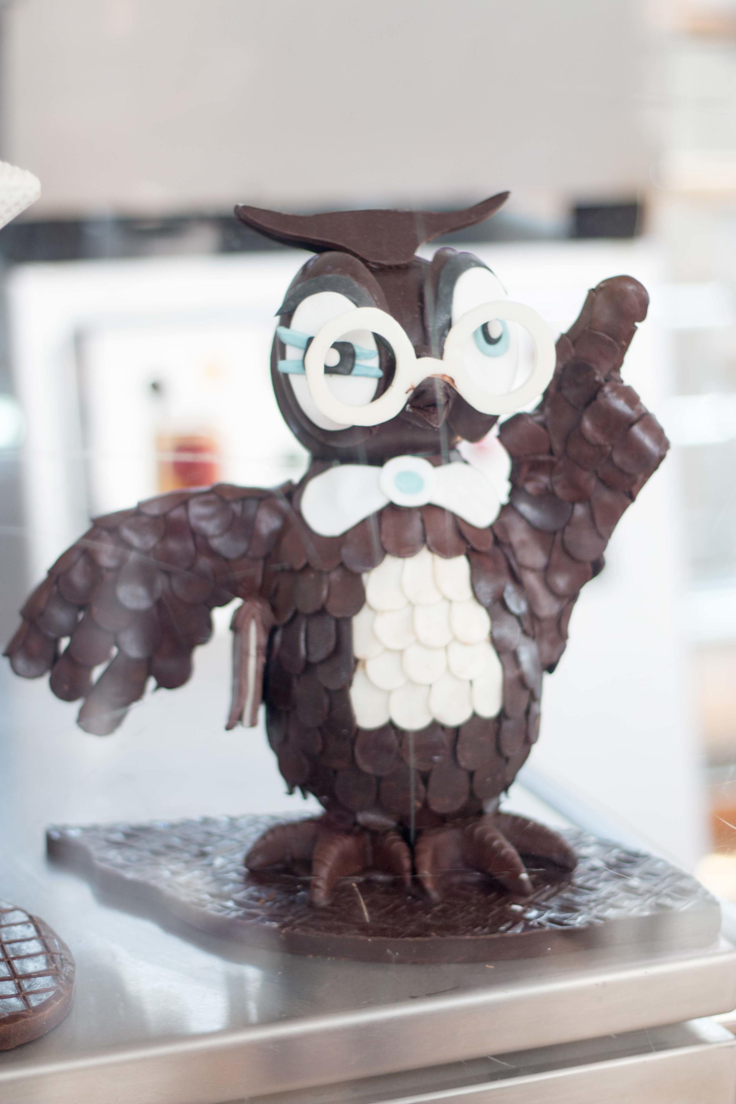 I wonder how I can get a chocolate owl....