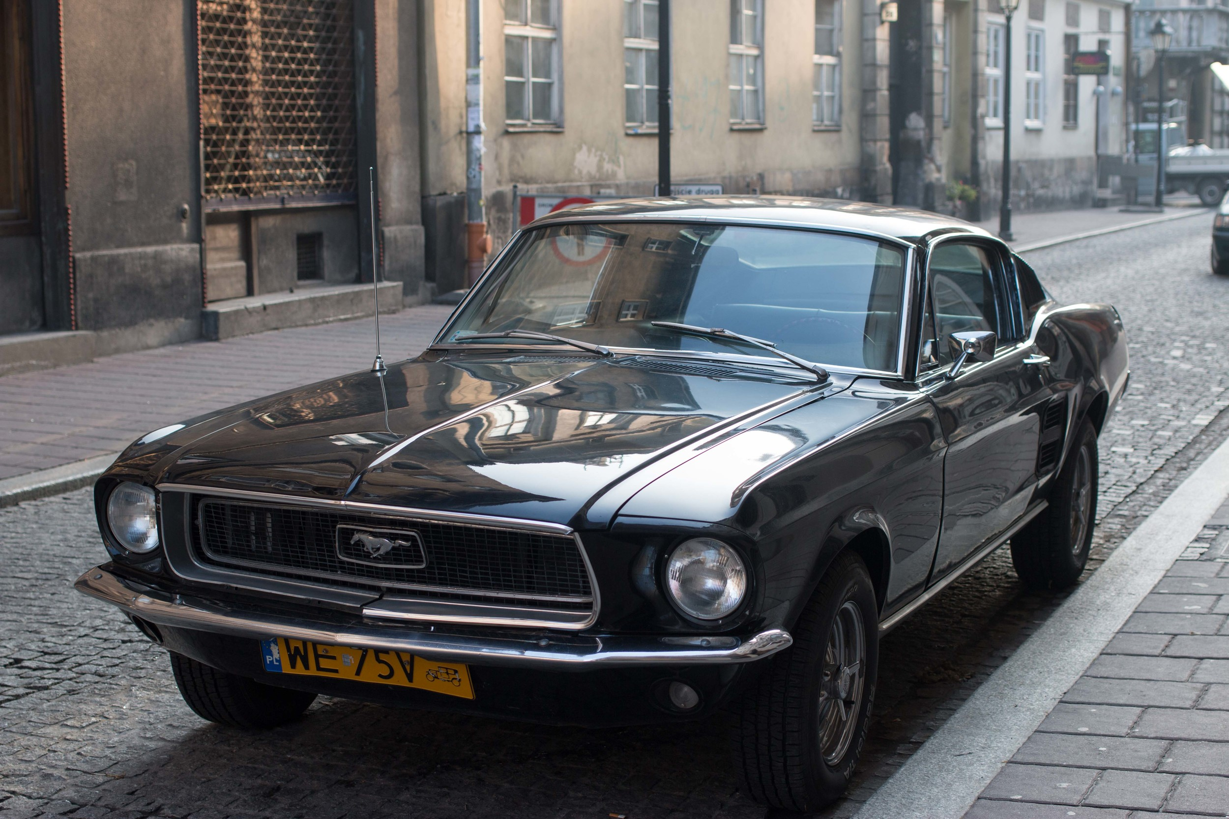 Europeans have a love affair with the mustang.