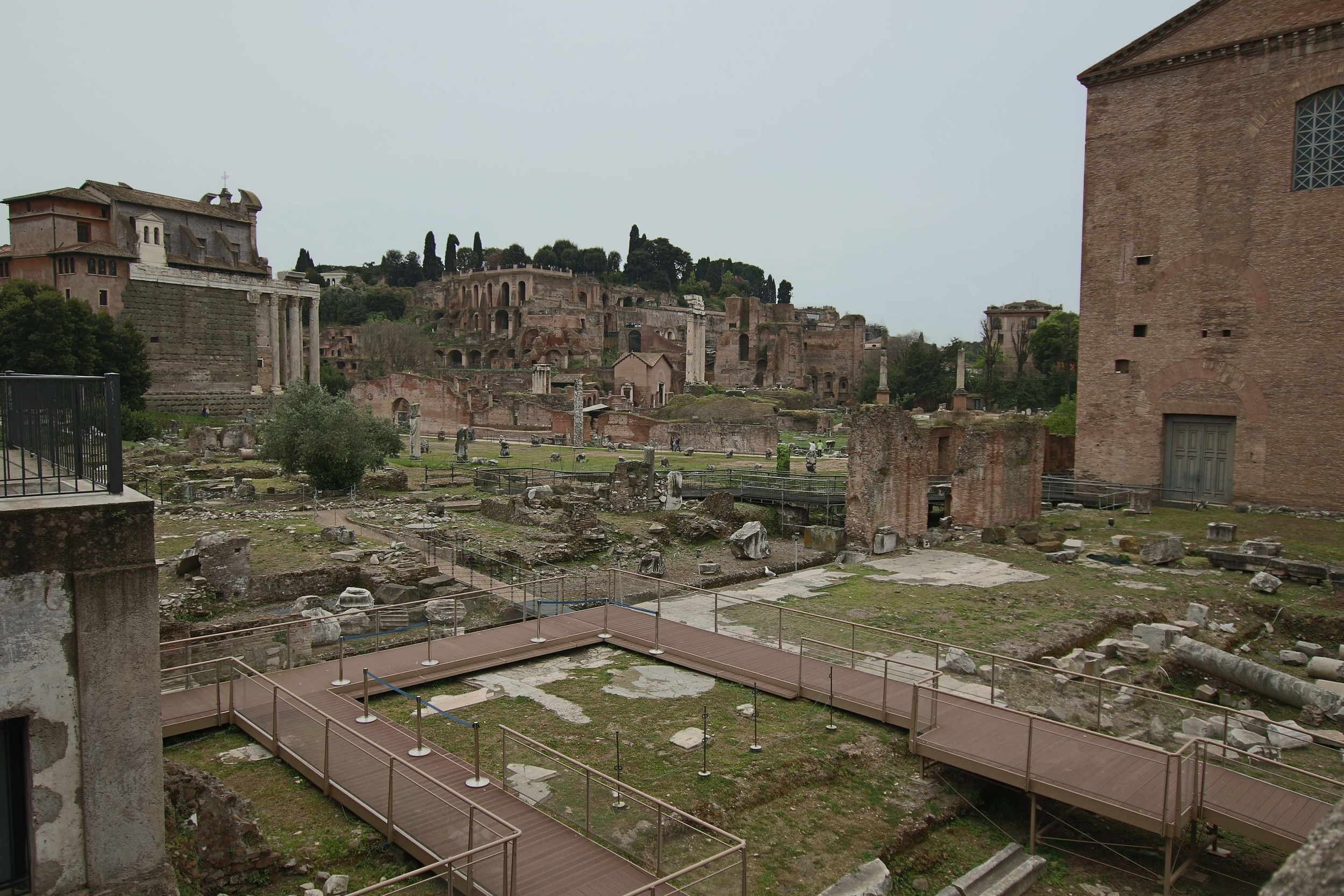 Roman Forum with Palatine hill in the background