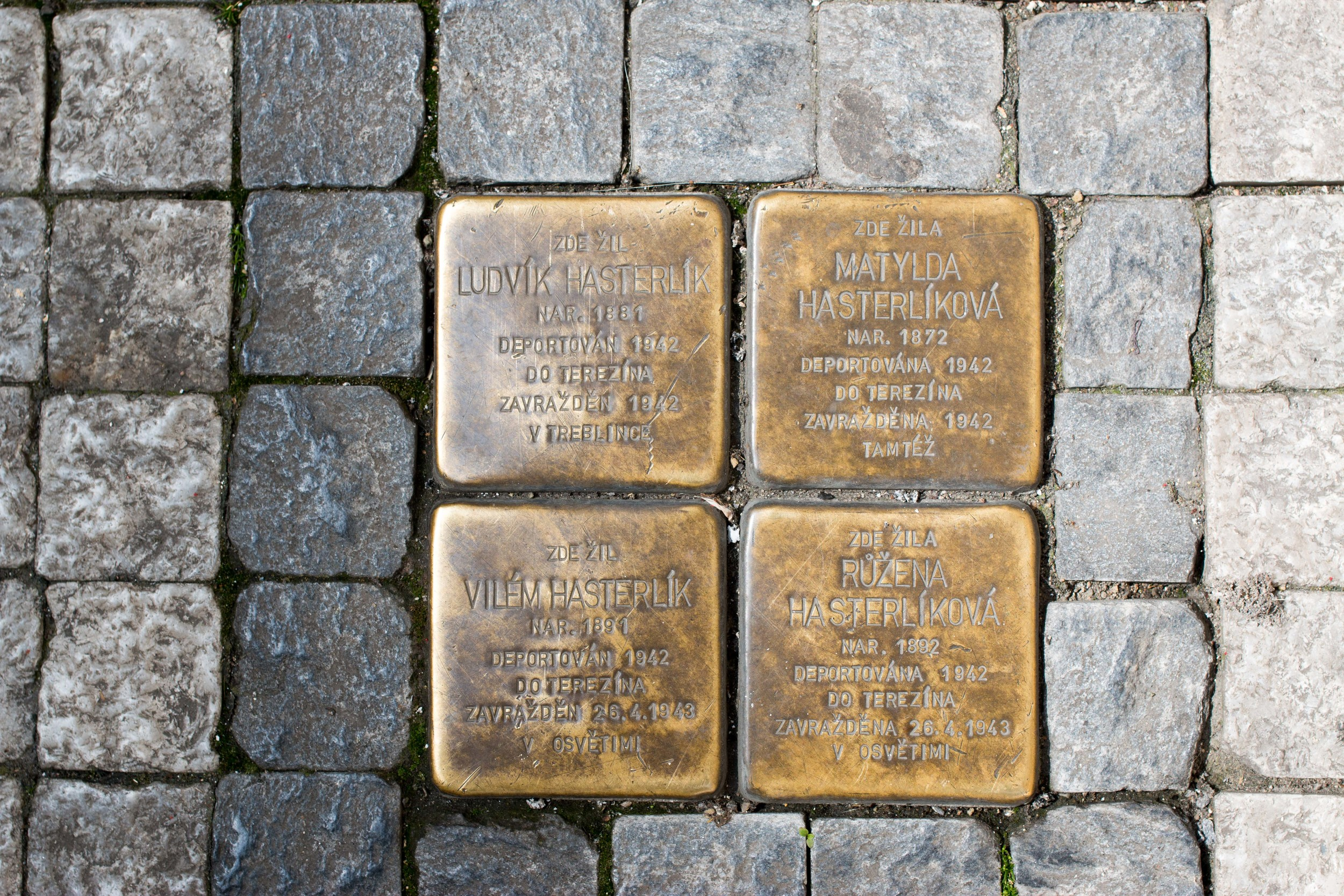 Prague. Two Brothers and their wives deported in 1942 (top) and 1943 (bottom) to Theresenstadt. One brother was then sent to Treblinka where he was murdered in  1942, while his wife was murdered at Theresenstadt. The younger brother and his wife were later sent to Auschwitz and killed in 1943.