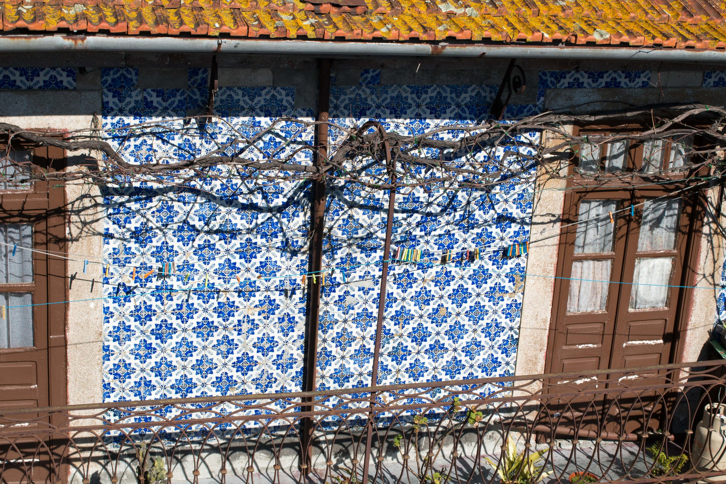 Vines, Clothesline, and Tile; POrto