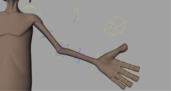 FK/ IK Arm.  The arms can be controlled in both FK and IK. Both can be squashed and stretched for quick cartoon movement.