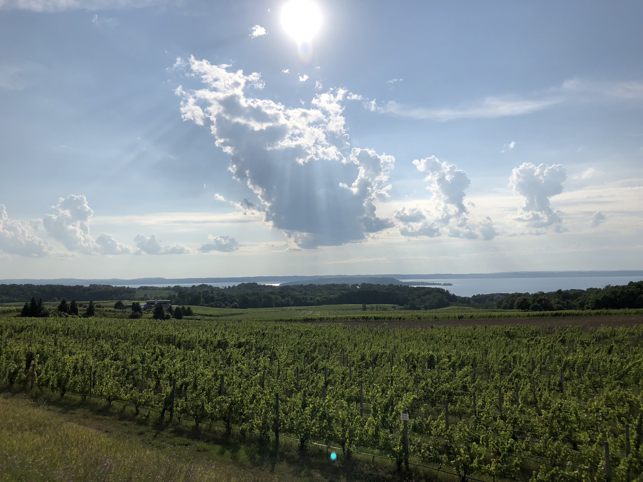 Michigan wine country, also on Old Mission Peninsula