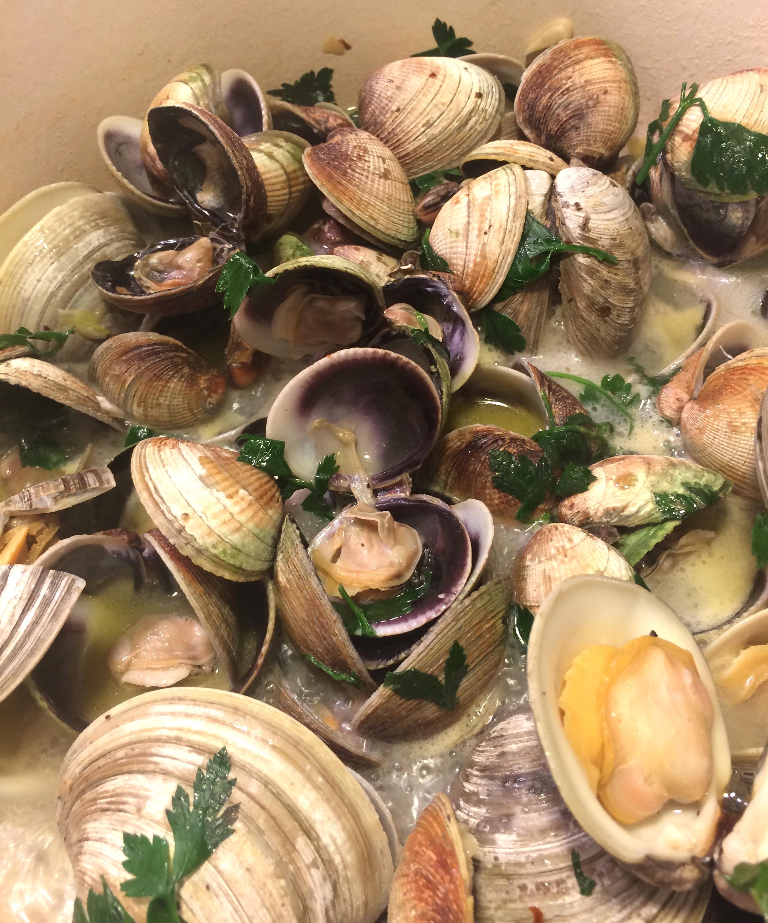 delia clams 2.JPG