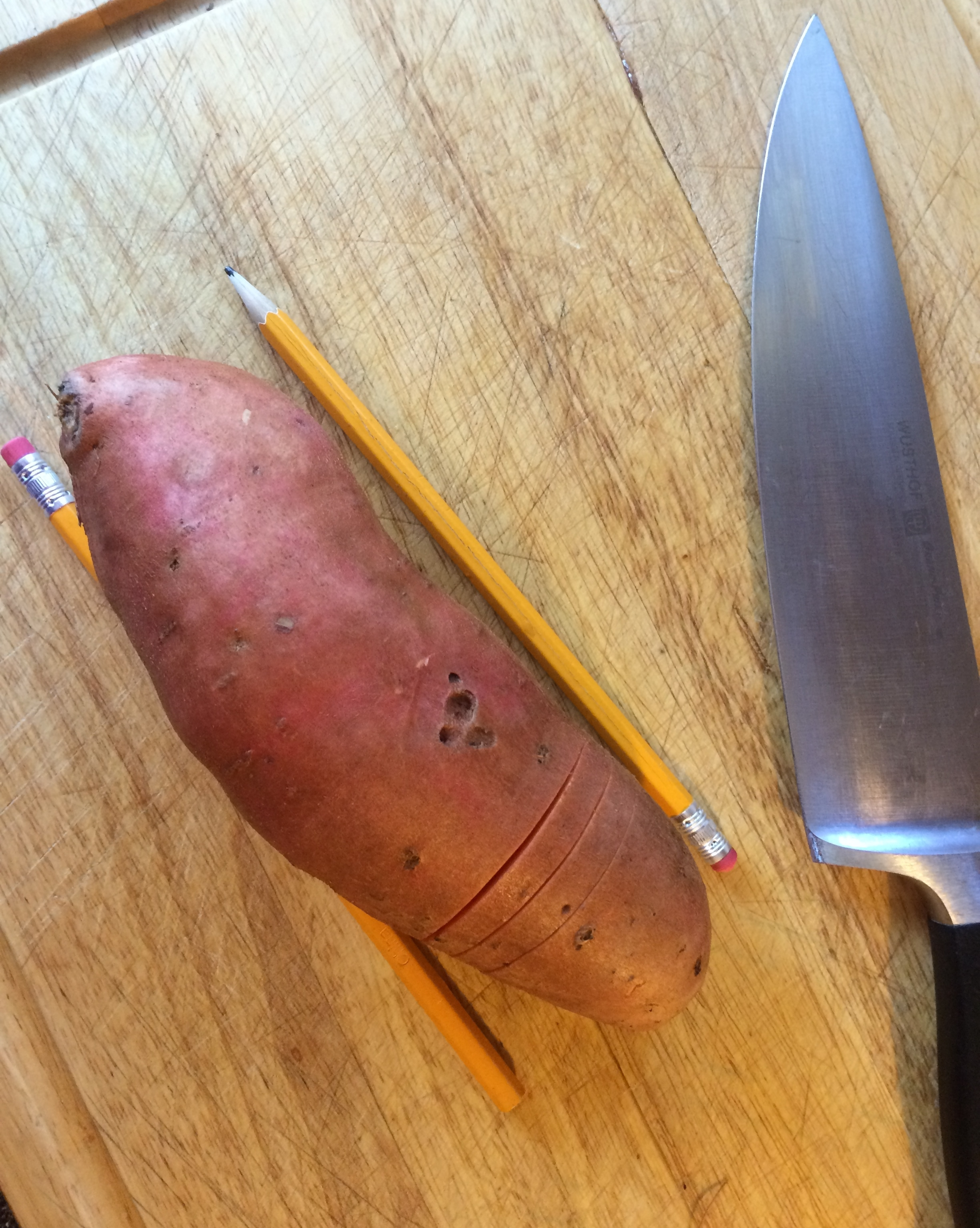 sweet potato cutting with pencil.JPG