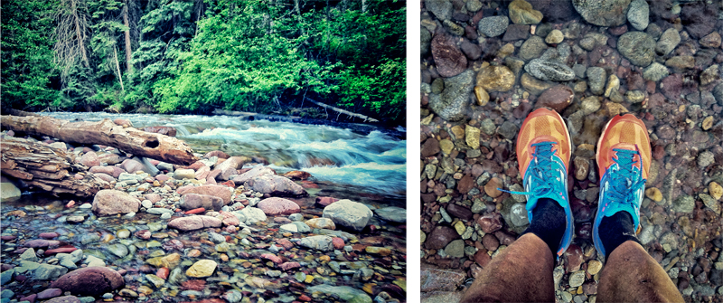 An evening run after work on the local trails, testing some shoes for work. Avalanche creek is so gorgeous!