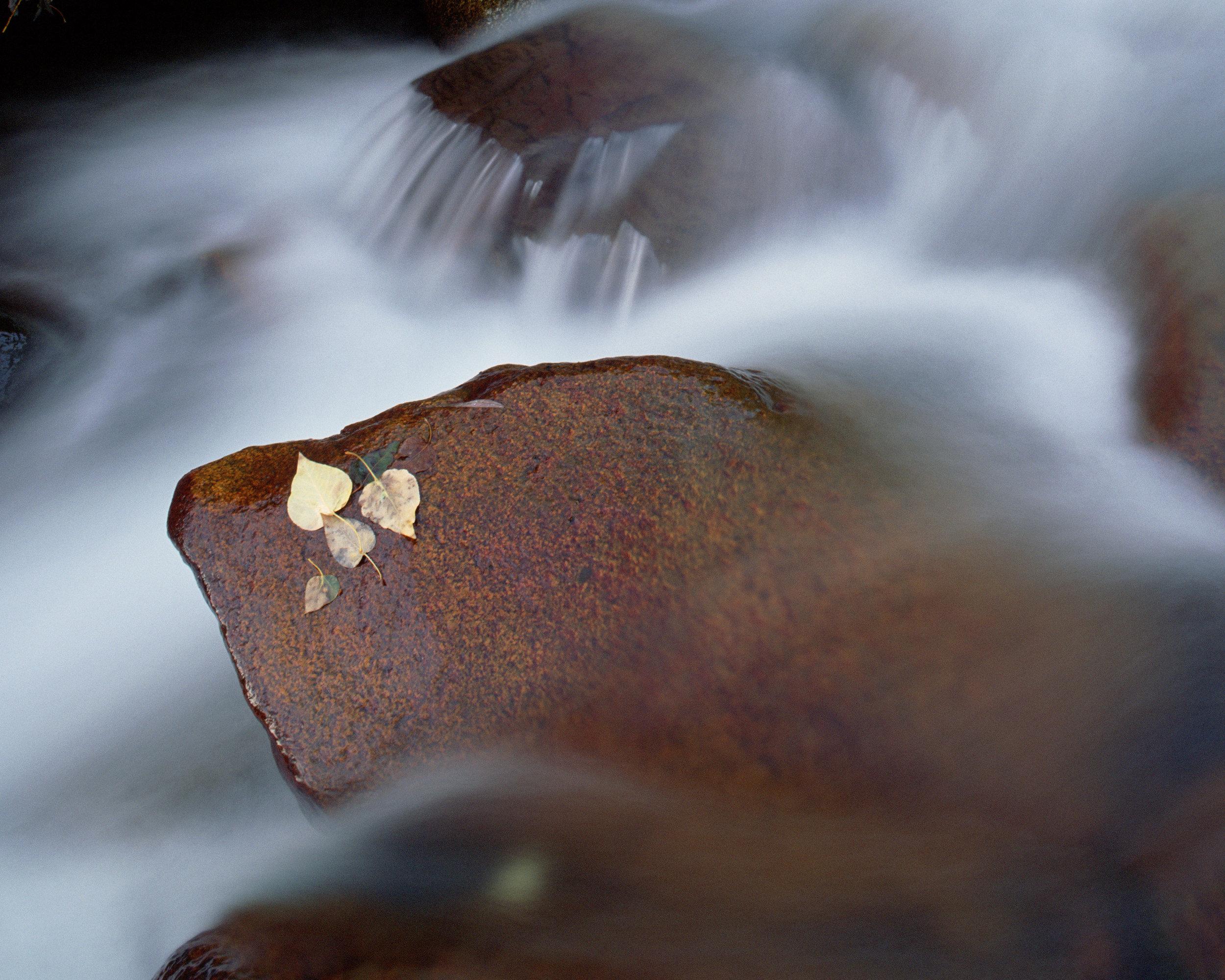 Water-4.jpg