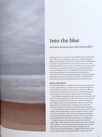 bluemind1 copy.jpg