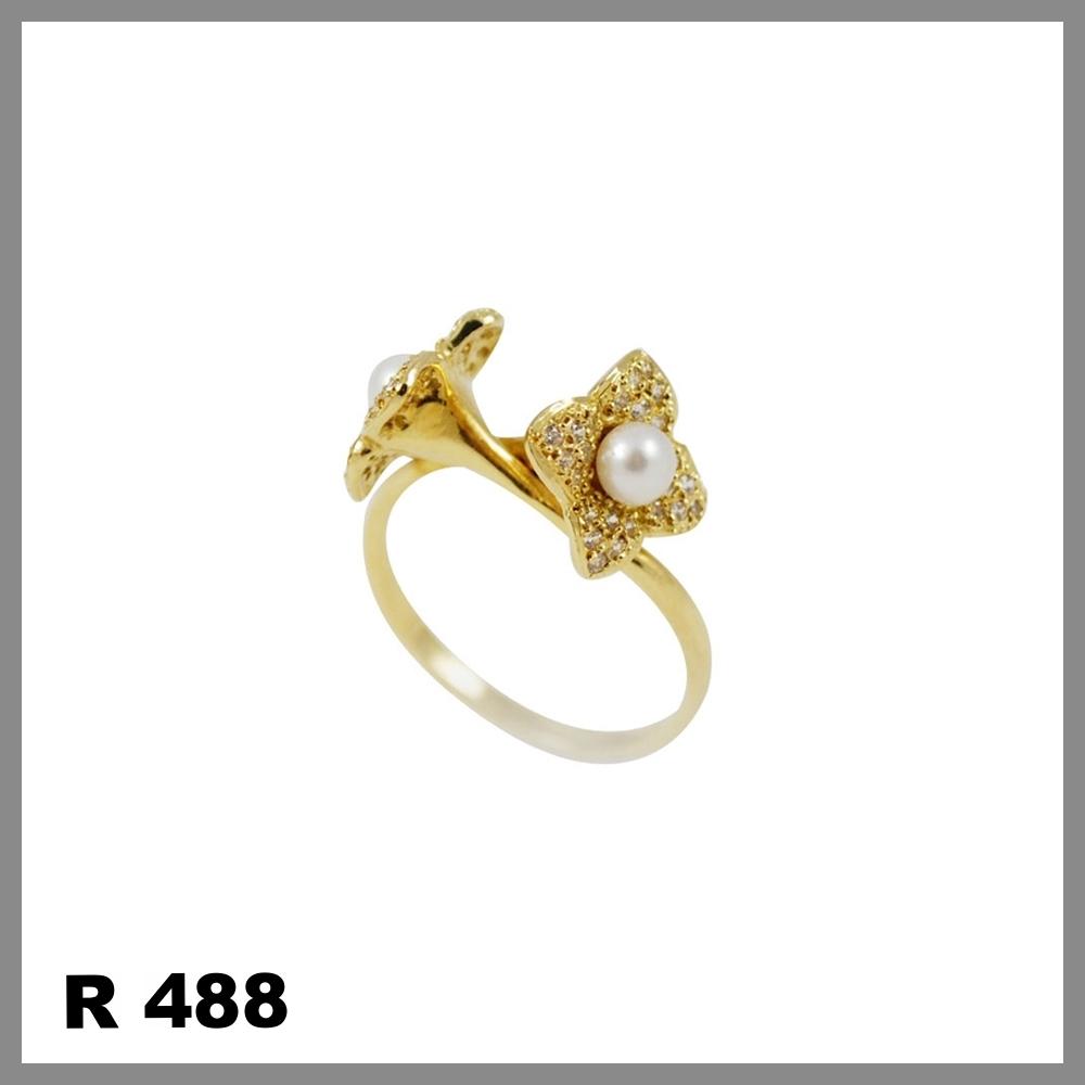 R488.jpg