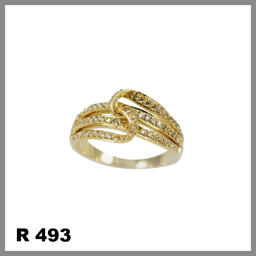 R493++...jpg